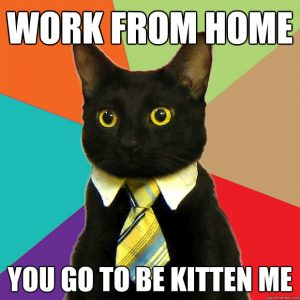 83 Best Work From Home Memes Woo yay go daichi welcome and thanks for joining! 83 best work from home memes