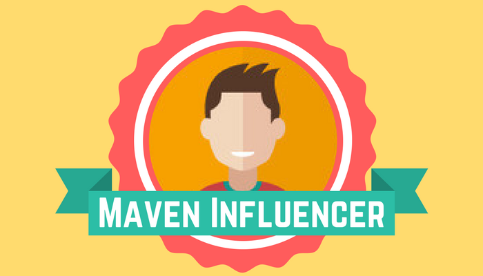 Team Performance Team Member Types Maven Influencer