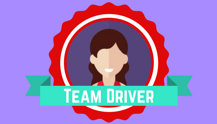 Team Performance: Team Member Types Team Driver