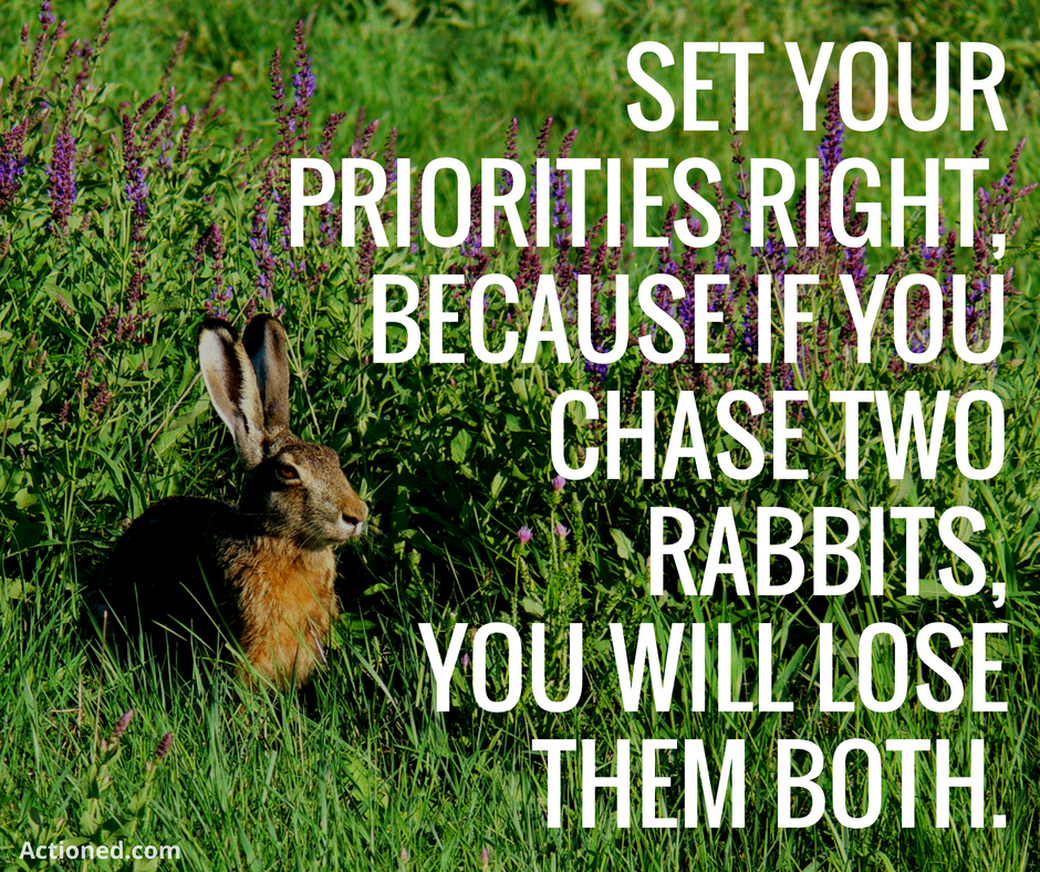 productivity quote chase two rabbits